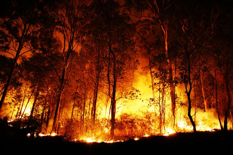 The Victorian bushfires have cut-off the telephony and Internet connectivity of thousands of people