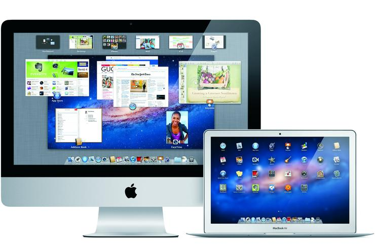 The Mac OS X Lion operating system.